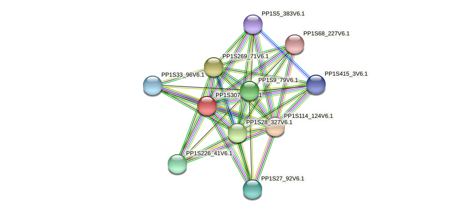 PP1S307_76V6.1 protein (Physcomitrella patens) - STRING interaction network