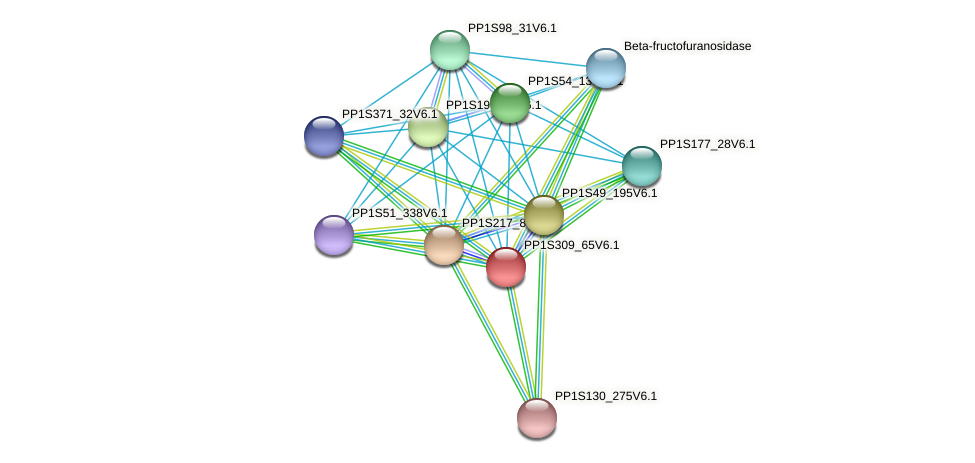 PP1S309_65V6.1 protein (Physcomitrella patens) - STRING interaction network
