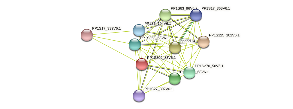 PP1S309_83V6.1 protein (Physcomitrella patens) - STRING interaction network