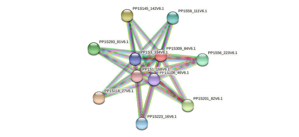 PP1S309_84V6.1 protein (Physcomitrella patens) - STRING interaction network