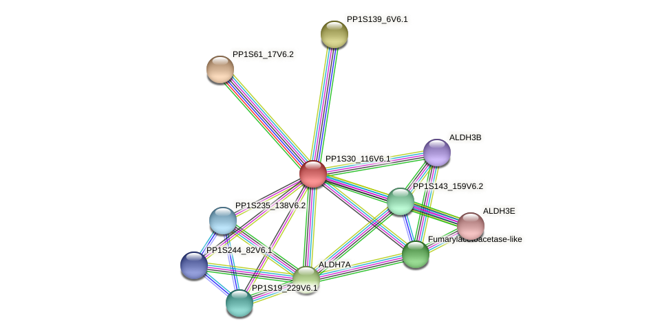 PP1S30_116V6.1 protein (Physcomitrella patens) - STRING interaction network