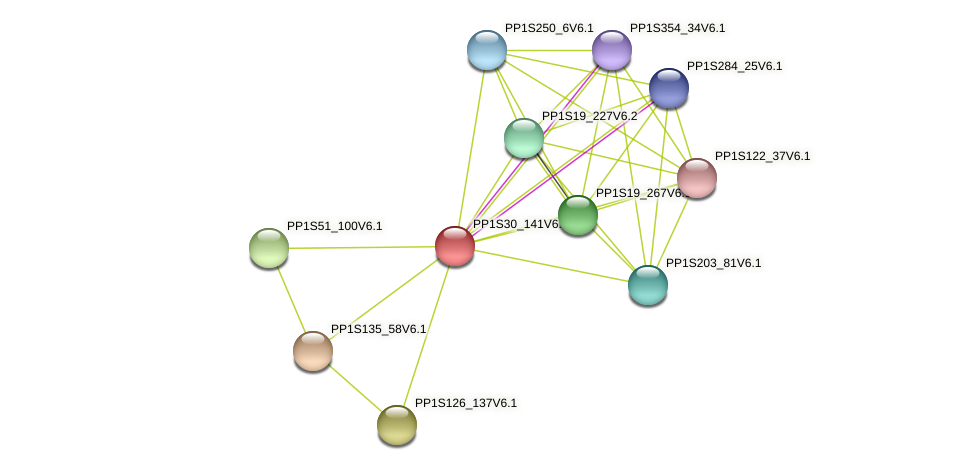 PP1S30_141V6.1 protein (Physcomitrella patens) - STRING interaction network