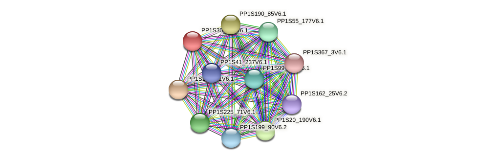 PP1S30_145V6.1 protein (Physcomitrella patens) - STRING interaction network