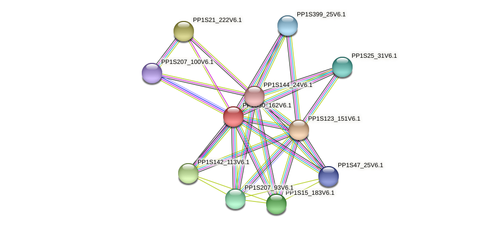PP1S30_162V6.1 protein (Physcomitrella patens) - STRING interaction network