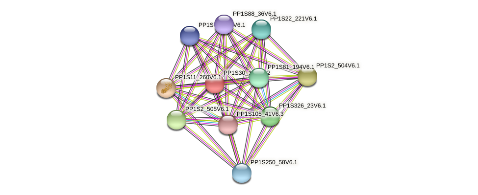 PP1S30_190V6.2 protein (Physcomitrella patens) - STRING interaction network