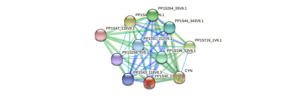 PP1S30_234V6.1 protein (Physcomitrella patens) - STRING interaction network