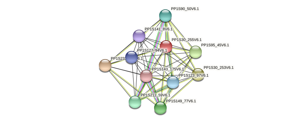 PP1S30_255V6.1 protein (Physcomitrella patens) - STRING interaction network