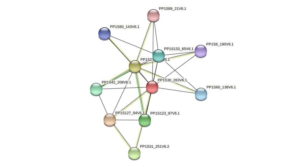 PP1S30_263V6.1 protein (Physcomitrella patens) - STRING interaction network
