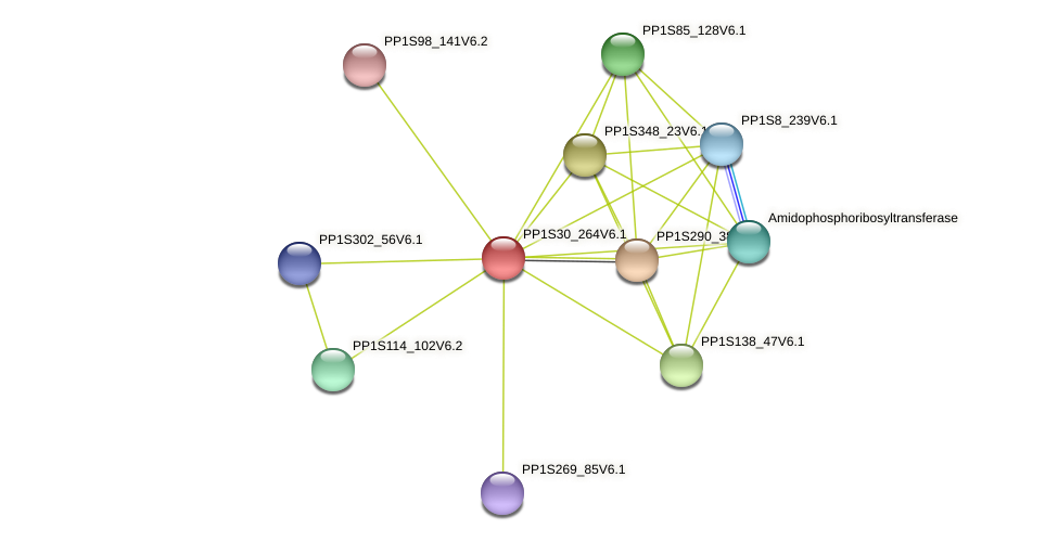 PP1S30_264V6.1 protein (Physcomitrella patens) - STRING interaction network