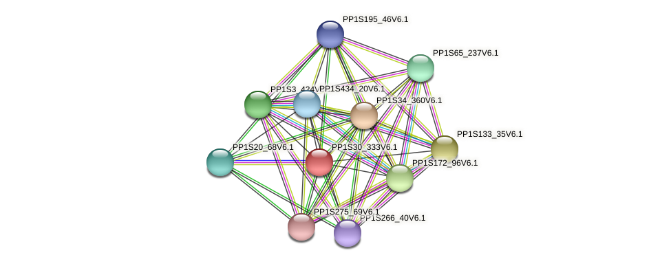 PP1S30_333V6.1 protein (Physcomitrella patens) - STRING interaction network