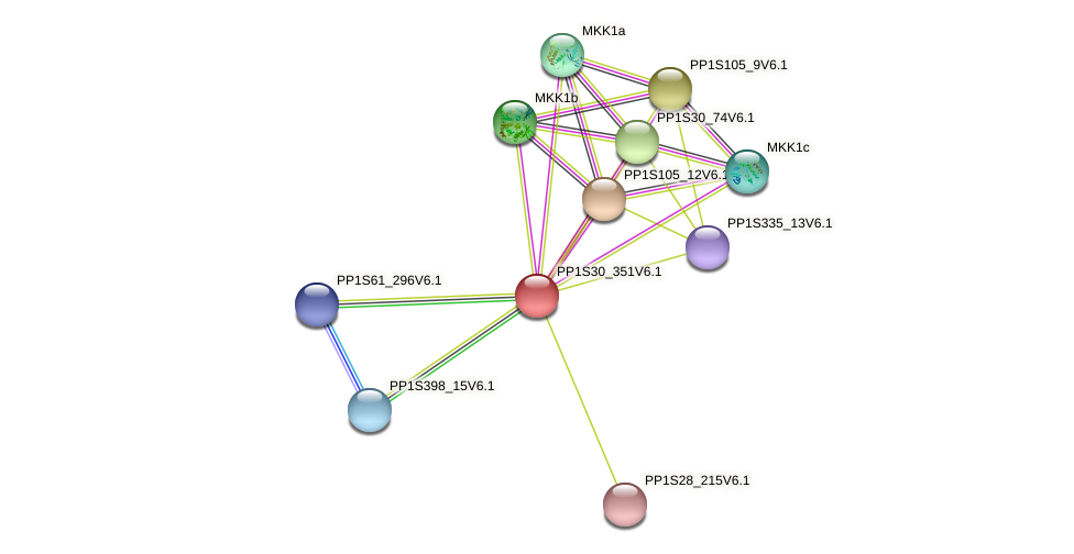 PP1S30_351V6.1 protein (Physcomitrella patens) - STRING interaction network
