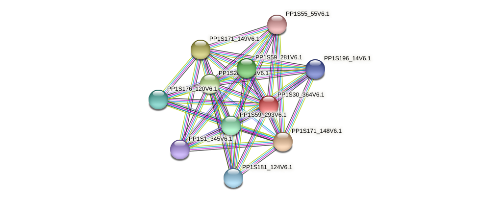 PP1S30_364V6.1 protein (Physcomitrella patens) - STRING interaction network