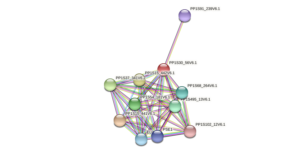 PP1S30_56V6.1 protein (Physcomitrella patens) - STRING interaction network