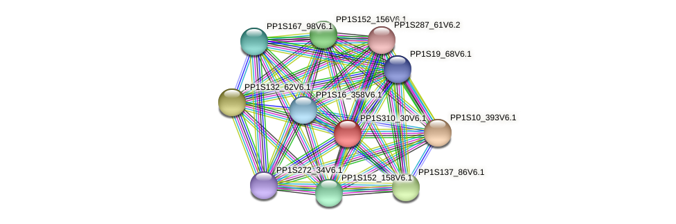 PP1S310_30V6.1 protein (Physcomitrella patens) - STRING interaction network