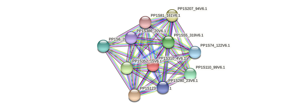 PP1S310_4V6.1 protein (Physcomitrella patens) - STRING interaction network