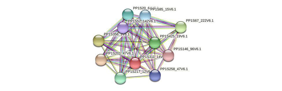 PP1S311_14V6.1 protein (Physcomitrella patens) - STRING interaction network