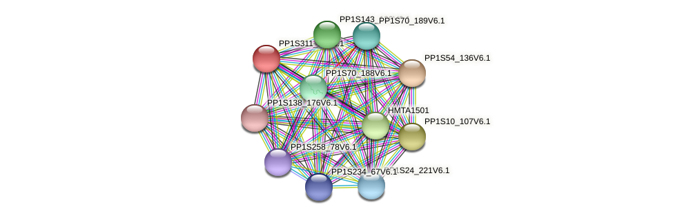 SDG1516 protein (Physcomitrella patens) - STRING interaction network