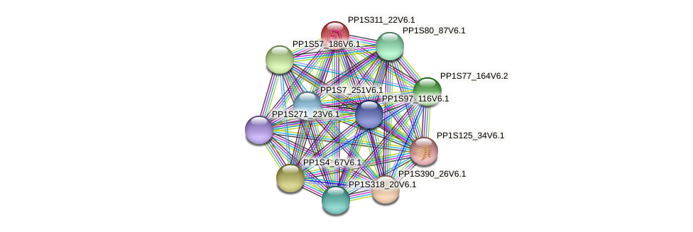 PP1S311_22V6.1 protein (Physcomitrella patens) - STRING interaction network