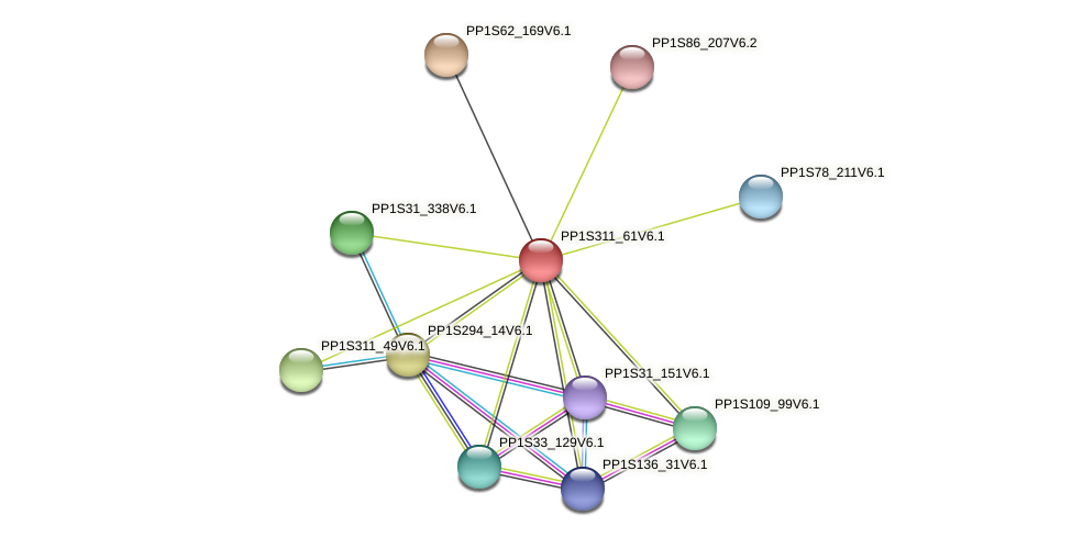 PP1S311_61V6.1 protein (Physcomitrella patens) - STRING interaction network
