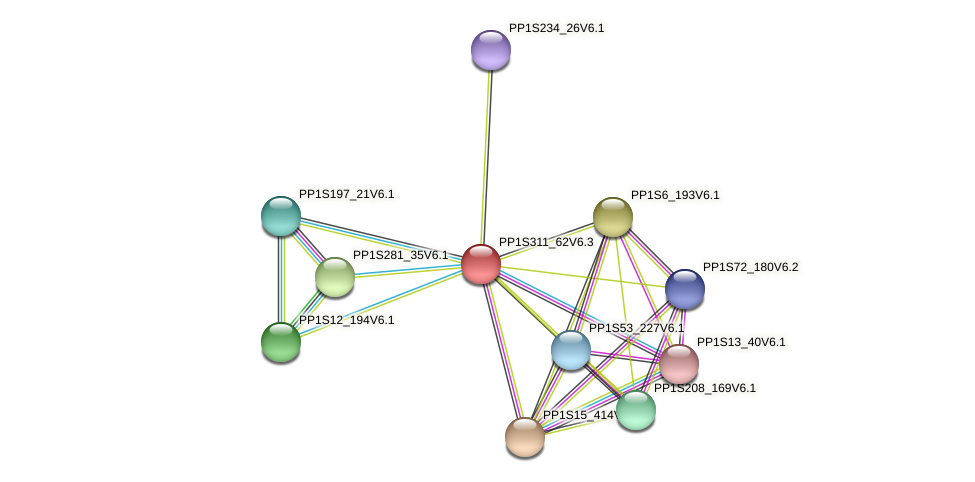 PP1S311_62V6.1 protein (Physcomitrella patens) - STRING interaction network