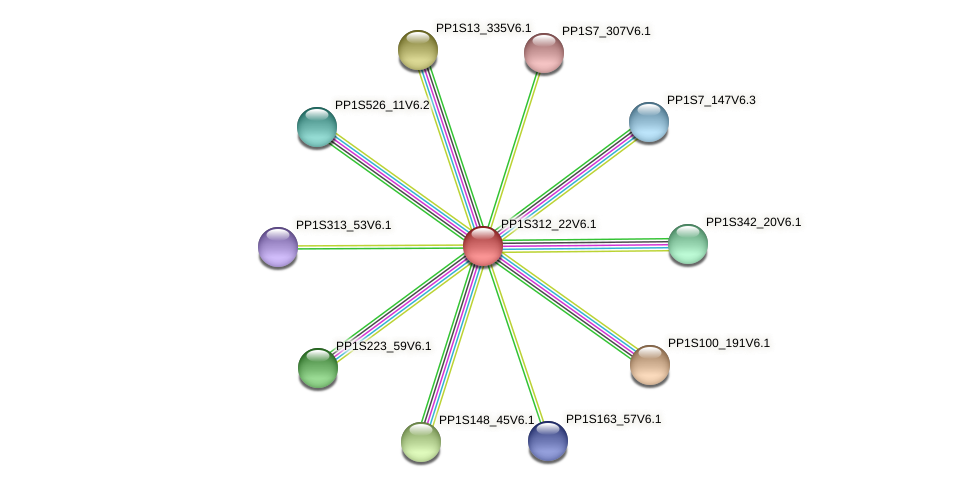 PP1S312_22V6.1 protein (Physcomitrella patens) - STRING interaction network