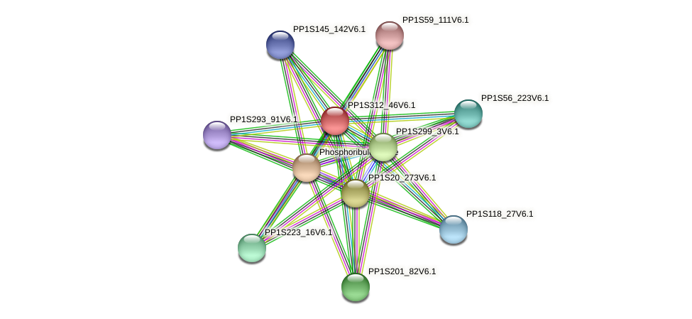 PP1S312_46V6.1 protein (Physcomitrella patens) - STRING interaction network