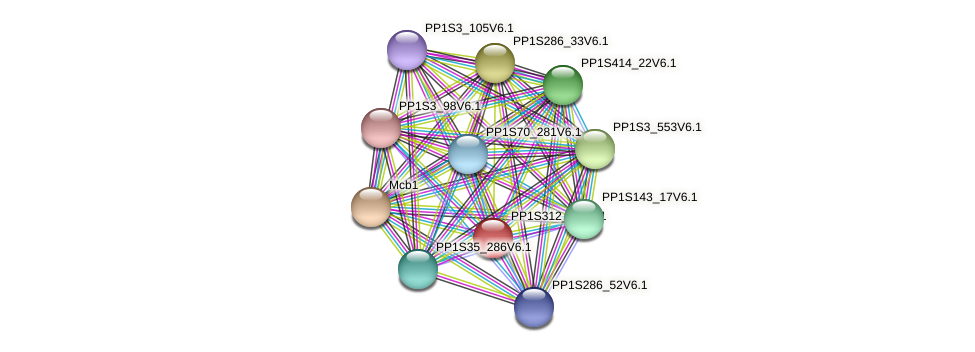 PP1S312_50V6.1 protein (Physcomitrella patens) - STRING interaction network
