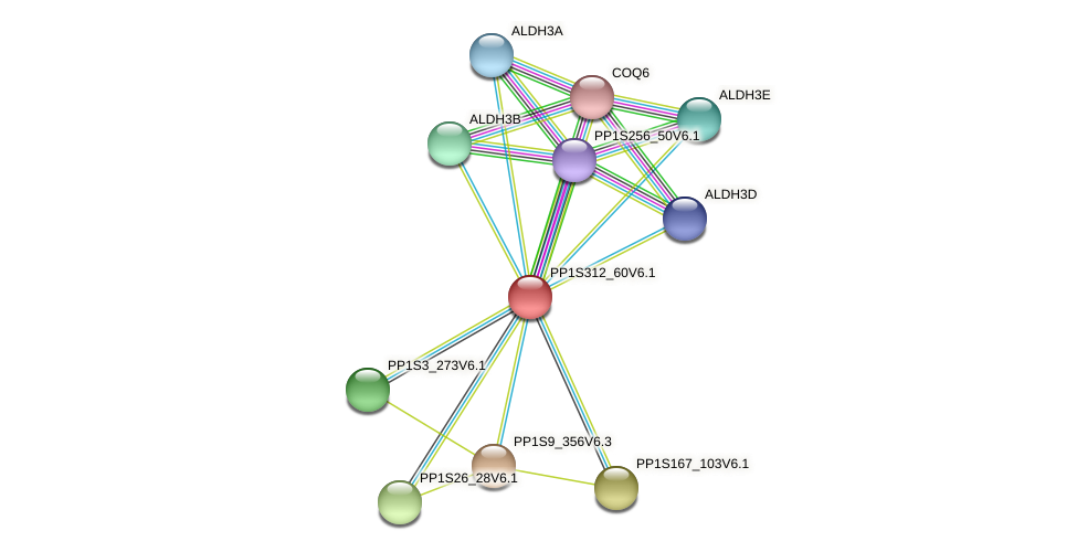 PP1S312_60V6.1 protein (Physcomitrella patens) - STRING interaction network
