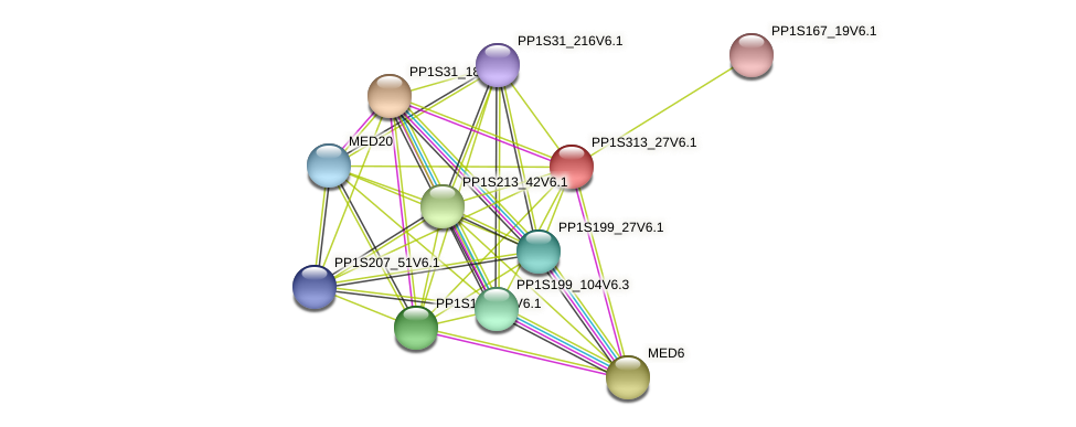 PP1S313_27V6.1 protein (Physcomitrella patens) - STRING interaction network