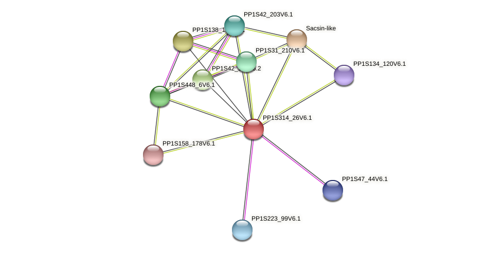 PP1S314_26V6.1 protein (Physcomitrella patens) - STRING interaction network
