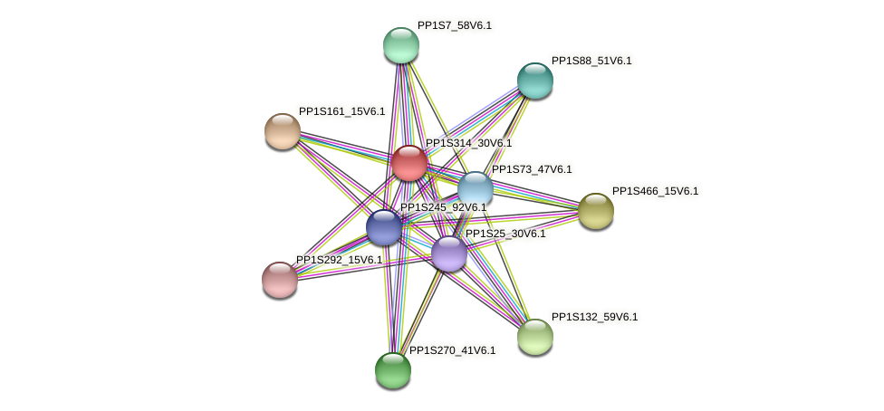 PP1S314_30V6.1 protein (Physcomitrella patens) - STRING interaction network