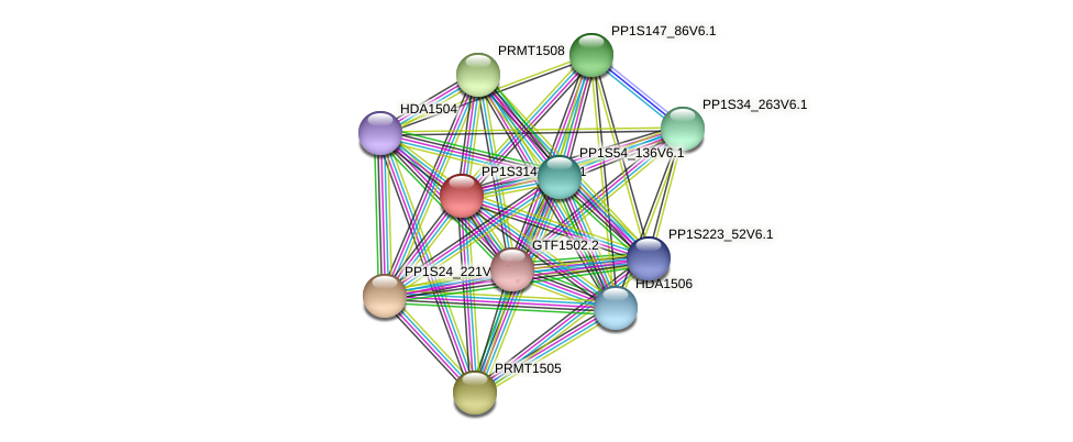 PP1S314_51V6.1 protein (Physcomitrella patens) - STRING interaction network