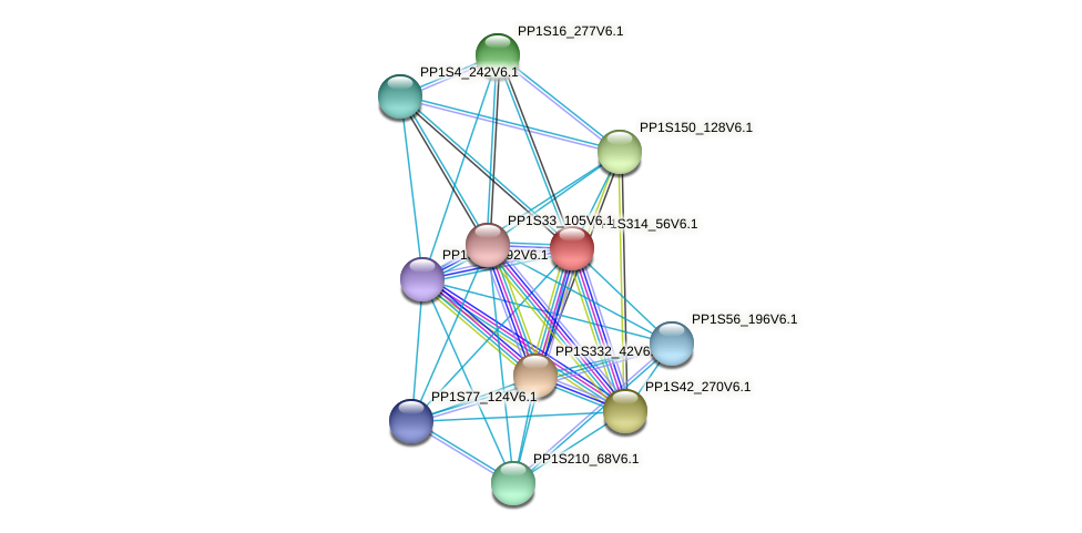 PP1S314_56V6.1 protein (Physcomitrella patens) - STRING interaction network