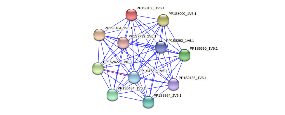 PP1S3150_1V6.1 protein (Physcomitrella patens) - STRING interaction network