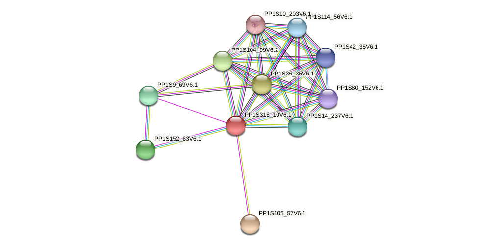 PP1S315_10V6.1 protein (Physcomitrella patens) - STRING interaction network