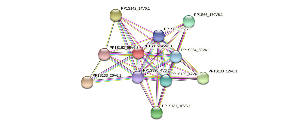 PP1S315_45V6.1 protein (Physcomitrella patens) - STRING interaction network