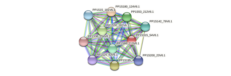 PP1S315_54V6.1 protein (Physcomitrella patens) - STRING interaction network