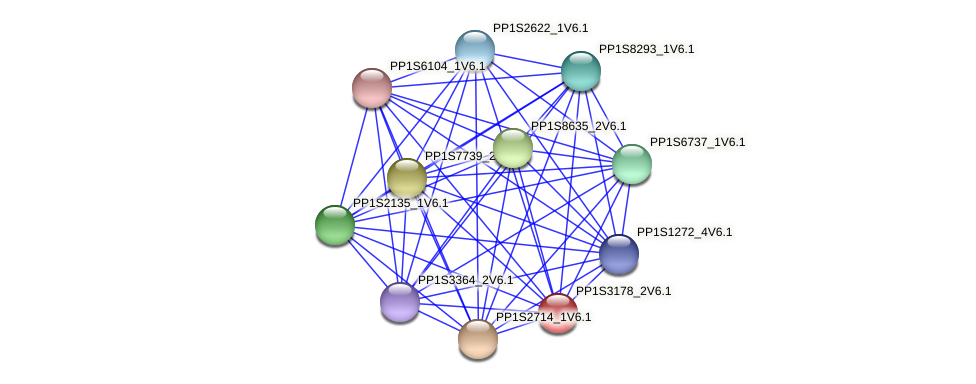 PP1S3178_2V6.1 protein (Physcomitrella patens) - STRING interaction network