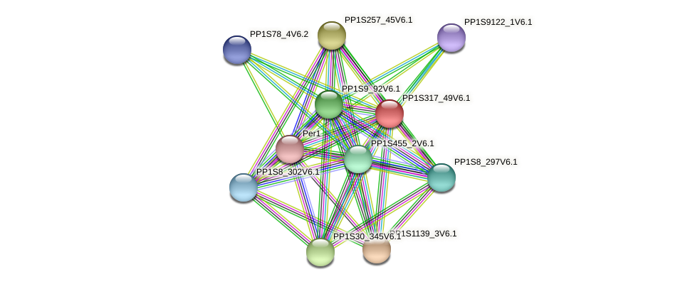 PP1S317_49V6.1 protein (Physcomitrella patens) - STRING interaction network