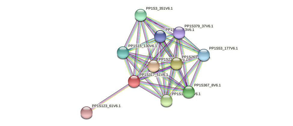 PP1S317_51V6.1 protein (Physcomitrella patens) - STRING interaction network