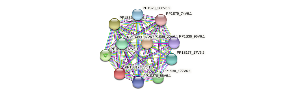 PP1S317_8V6.1 protein (Physcomitrella patens) - STRING interaction network