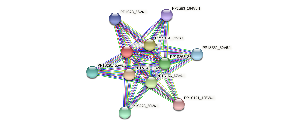 PP1S318_24V6.1 protein (Physcomitrella patens) - STRING interaction network