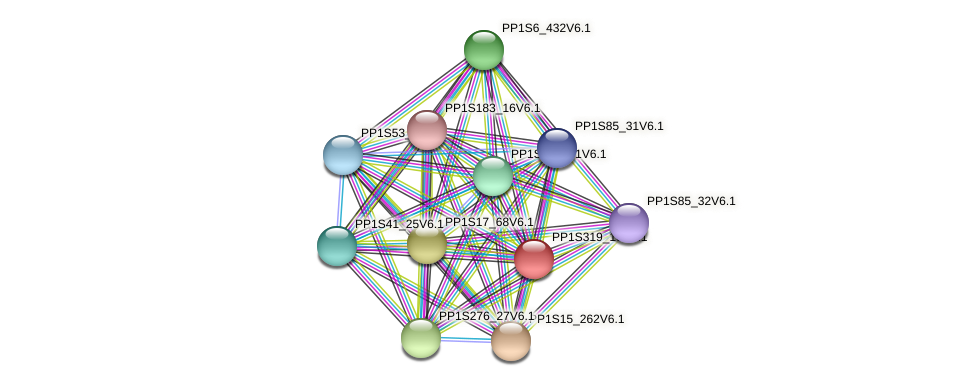 PP1S319_18V6.1 protein (Physcomitrella patens) - STRING interaction network