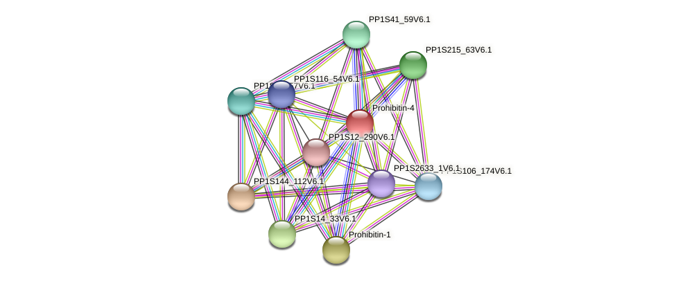 PP1S319_35V6.1 protein (Physcomitrella patens) - STRING interaction network