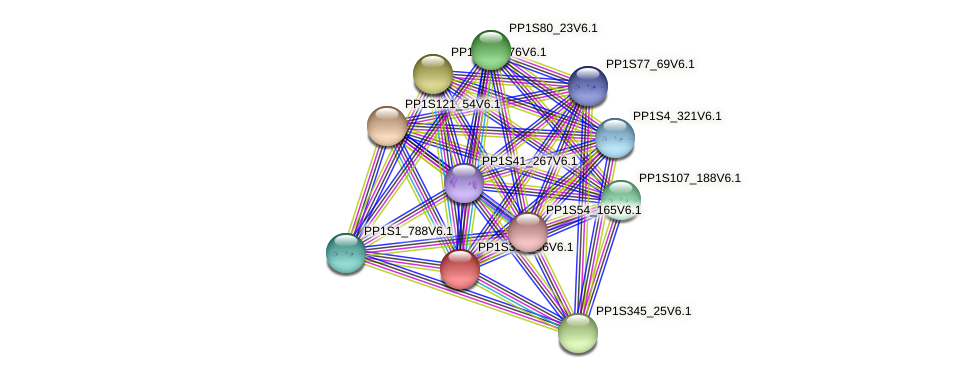 PP1S319_36V6.1 protein (Physcomitrella patens) - STRING interaction network