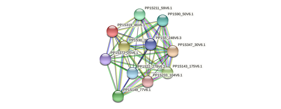 PP1S319_46V6.1 protein (Physcomitrella patens) - STRING interaction network