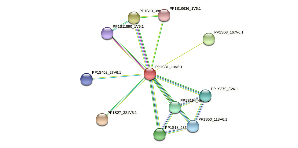 PP1S31_10V6.1 protein (Physcomitrella patens) - STRING interaction network