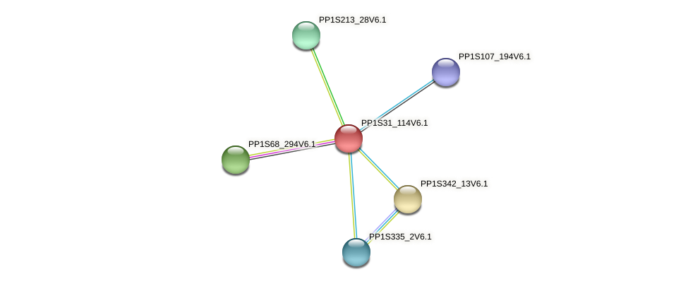 PP1S31_114V6.1 protein (Physcomitrella patens) - STRING interaction network
