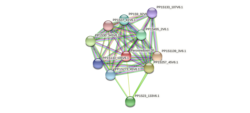 PP1S31_128V6.1 protein (Physcomitrella patens) - STRING interaction network