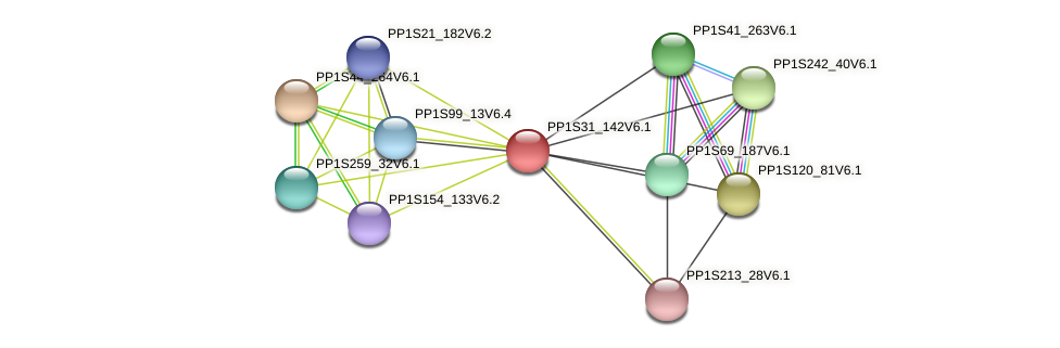 PP1S31_142V6.1 protein (Physcomitrella patens) - STRING interaction network